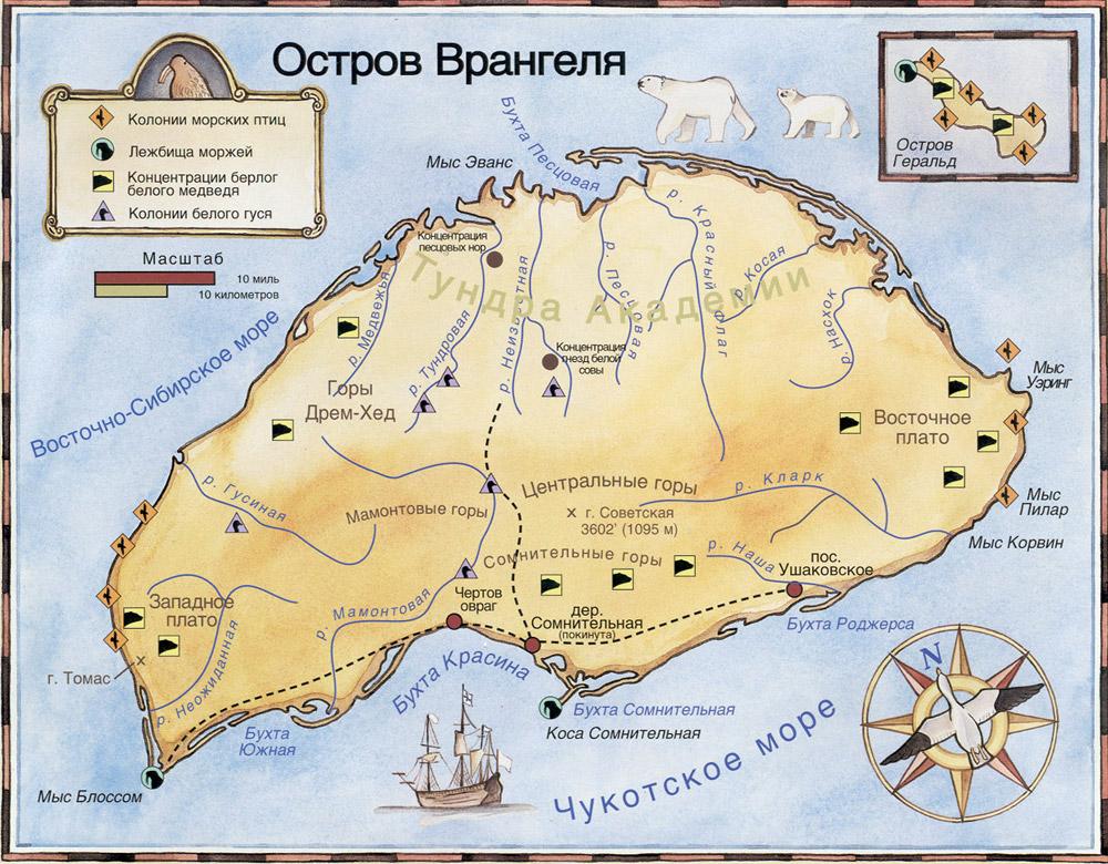Мамонтовый заповедник: займет остров врангеля и устье колымы
